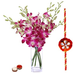 Beautiful Purple Orchids in Vase with a Free Rakhi
