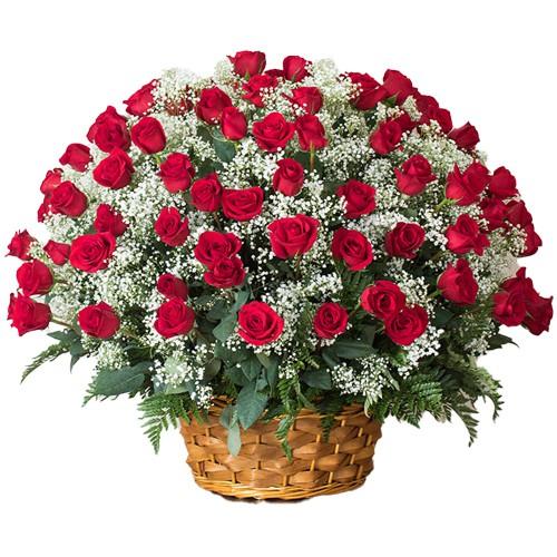 Shop Online for Dutch Red Roses Arrangement for Rose Day