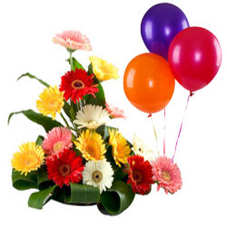 Expressive Sunshine Mixed Gerberas Bouquet and Balloons