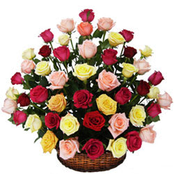 Pristine Basket of Multicoloured Roses