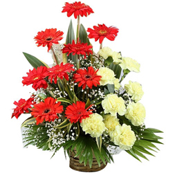 Vibrant Basket Arrangement of Yellow Color Carnations with Red Color Gerberas
