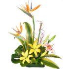 Traditional Pure Desire Arrangement of Lilies and Birds of Paradise