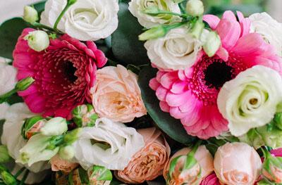 Fresh Flower to Ahmedabad
