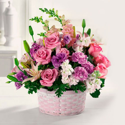 Send Gifts Online to Ahmedabad Free Delivery