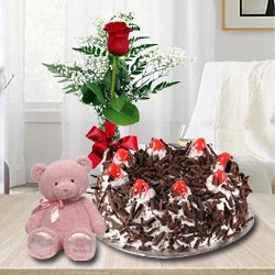 Garnished 1 Lb Black Forest Cake with Single Red Rose and a Small Teddy Bear