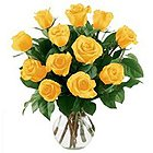 Charming Twelve Yellow Roses in a Vase with Full of Love to Kalyanpura