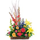 Multicolored Seasonal Flowers Arrangement of Good Wishes to Gandhi Ashram Ahmedabad
