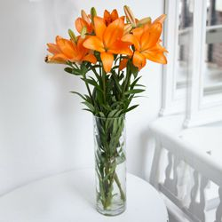 Fashionable Vase Filled with 6 Pcs. Mixed Lilies to Dhandhuka