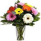 A Glass Vase full of MIxed Gerberas to Sub Foreign