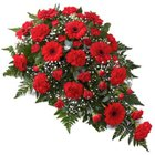 Flat Arrangement of 24 Red Flowers to Isanpur