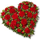 Scintillating 24 Red Carnations in Heart Shape to Kauka