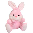 Cute Rabbit Soft Toy to Delhi Gala