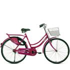 Vibrant BSA Rangoli Bicycle