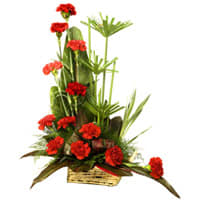 Order Online Bouquet of Carnations