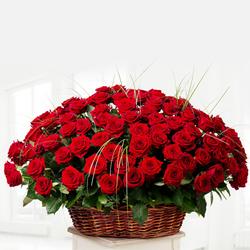 150 Red Dutch Roses Arrangement