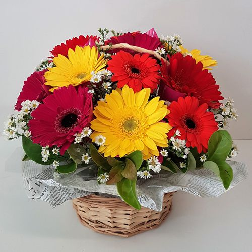 Book Online Basket of Mixed Gerberas