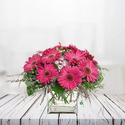 Deliver Online Bunch of Pink Gerberas