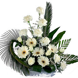Order Online Arrangement of Carnations N Gerberas