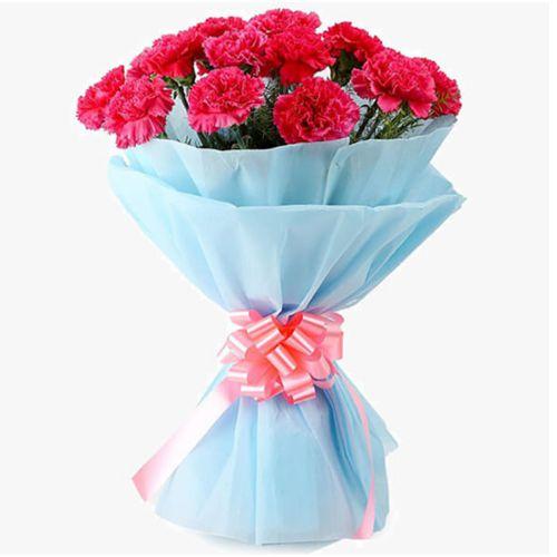 Shop Pink Carnations Bouquet Online
