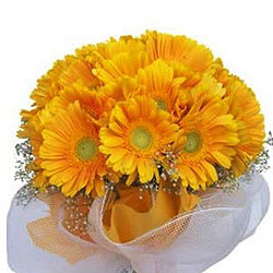 Book Online Bouquet of Yellow Gerberas