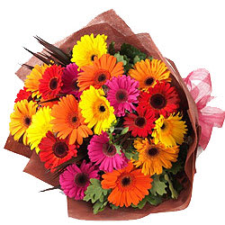 Deliver Bouquet of Mixed Gerberas Online