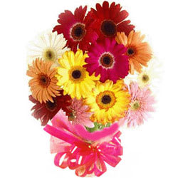 Gift Mixed Gerberas Bouquet Online