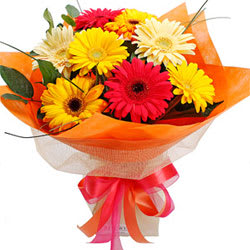 Online Order Bouquet of Mixed Gerberas