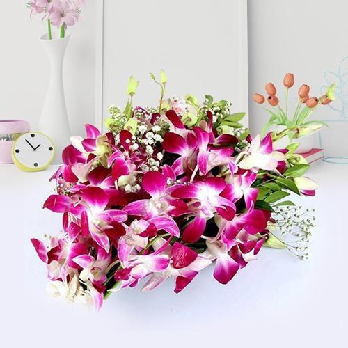 Dazzling Purple Orchid Stems Bunch