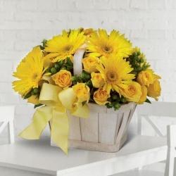 Nurtured Novelty Gerberas and Roses Arrangement