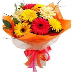 Superb Looking Bouquet of Assorted Gerberas