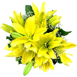 Gift Yellow Lilies Bouquet Online