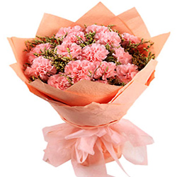 Deliver Online Pink Carnations Bouquet