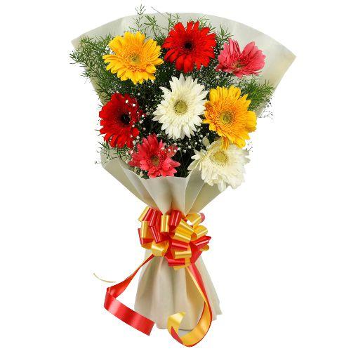 Send Mixed Gerberas Bouquet Online