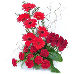Majestic Table Top Arrangement of Carnations, Roses nd Gerberas