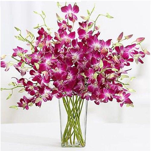 Deliver Online Orchids in a Glass vase