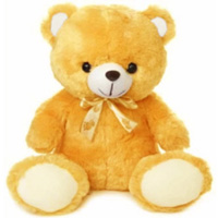 Provocative Stuffed Celebration Special Cream Teddy Bear