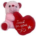 Soft Plush Teddy bear