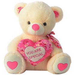 Affectionate Teddy